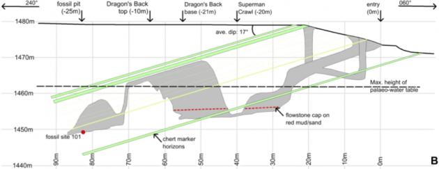 2013년 9월 동굴탐험가들이 뜨는 별 동굴을 탐사하다 지하 30m 공간(별들의 방)에서 호모 날레디 화석을 처음 발견했다(왼쪽 빨간 점). 이들 인류가 어떻게 이곳에 놓이게 됐는지는 미스터리다. - eLife 제공